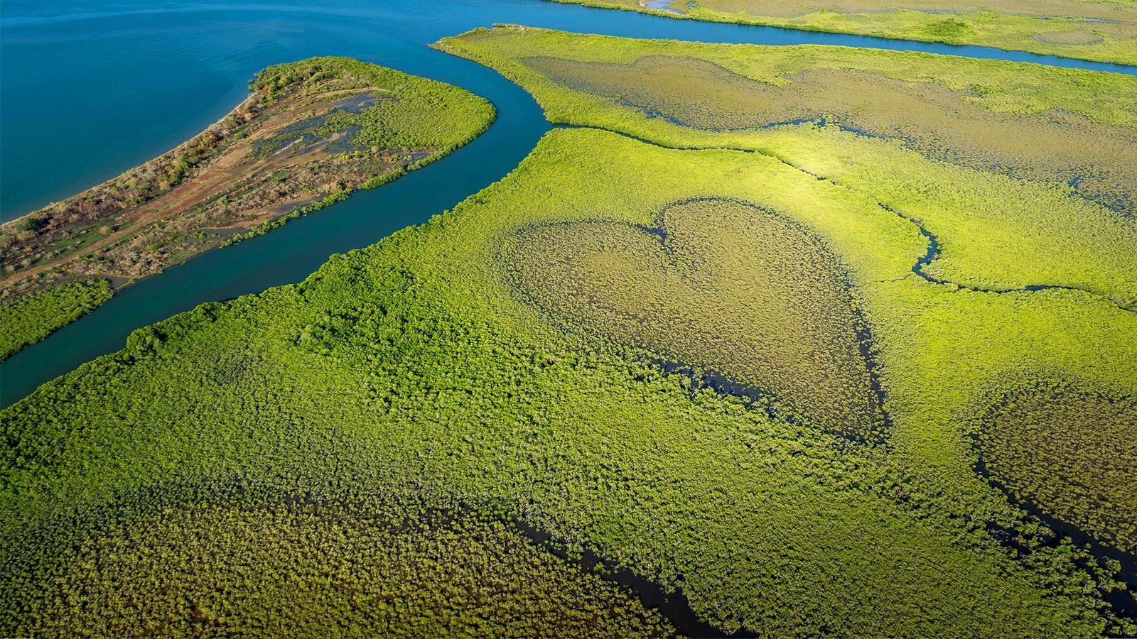 Mangrove de Voh if located in Nouvelle-Calédonie