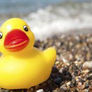 Odd objects reveal ocean secrets thumbnail