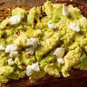 The avocado toast index thumbnail