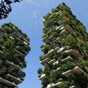 Italy's innovative skyward forest thumbnail