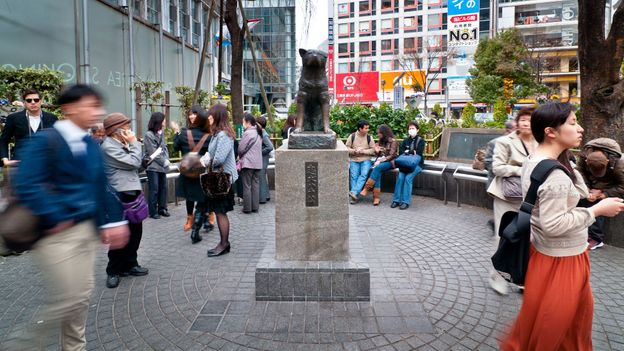 Hachiko Statue, a popular meeting place outside Shibuya Station (Credit: Keith Tsuji/Getty)