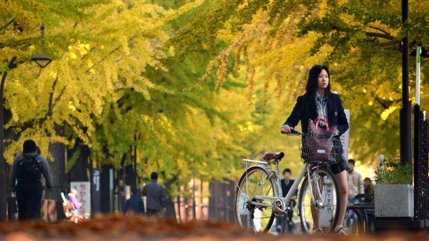 Under the gingko trees (Credit: Kazuhiro Nogi/AFP/Getty)