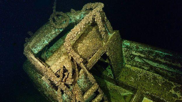 Sunken treasure (Credit: Steve Fanell)