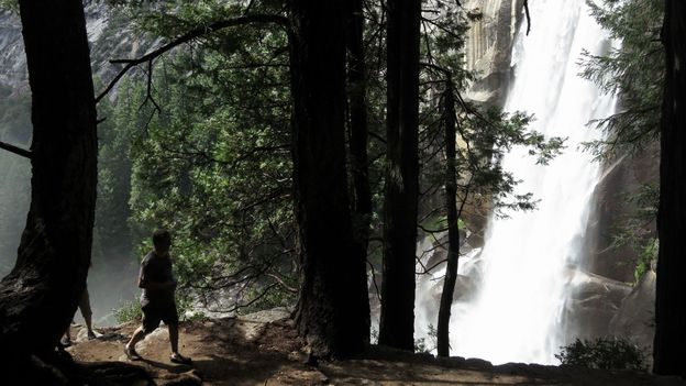 Trail running in Yosemite (Credit: Sean Gallup/Getty)