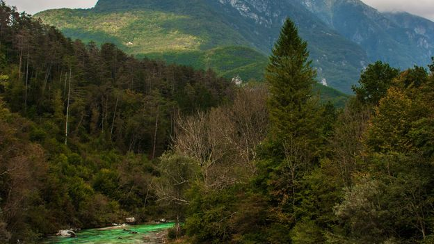 Aquamarine river rapids and dense emerald forests (Credit: Kirsten Amor)