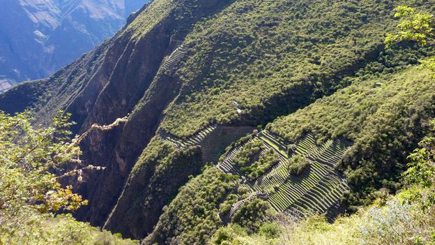 A view of Choquequirao's terraces (Credit: Cynthia Kane)