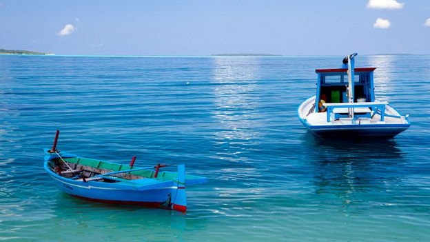 Typical Maldivian fishing boats (Credit: Credit: Diane Selkirk)