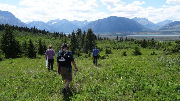 Hikers enjoy the Canadian nature reserve (Credit: Credit: Carol Patterson)