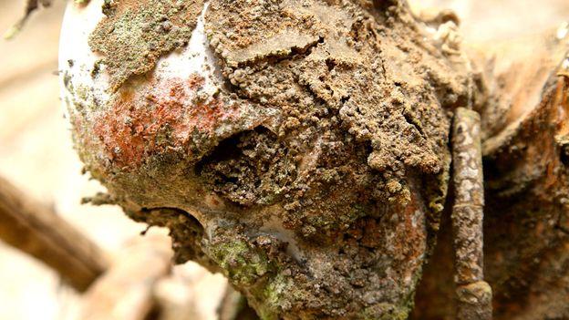 Aged skin clings to a skull (Credit: Credit: Ian Lloyd Neubauer)