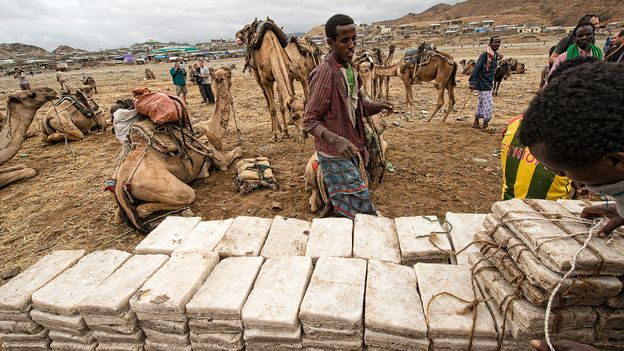 After extracting salt from lakes, Afar workers cut salt bricks (Credit: Credit: Dave Stamboulis)