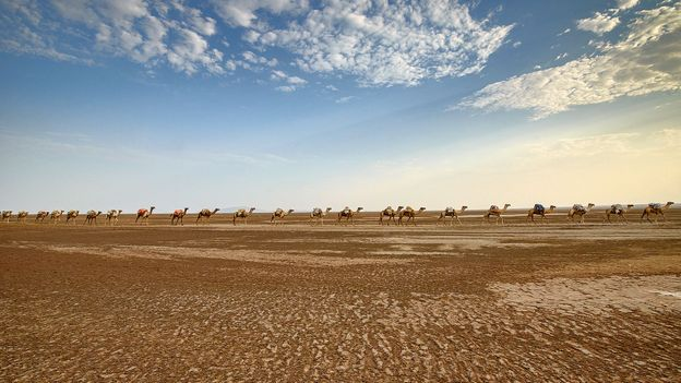 Camel caravans carried salt further west, until a road was built (Credit: Credit: Dave Stamboulis)
