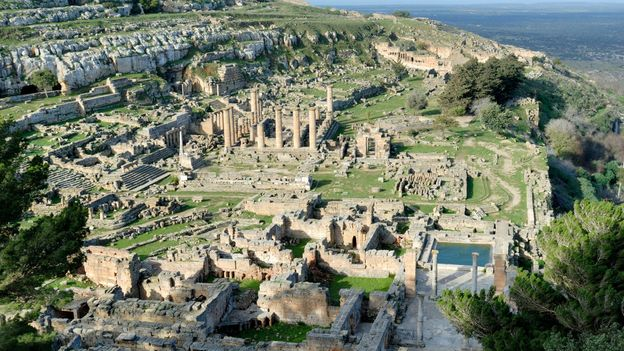 The mystery of the lost Roman herb