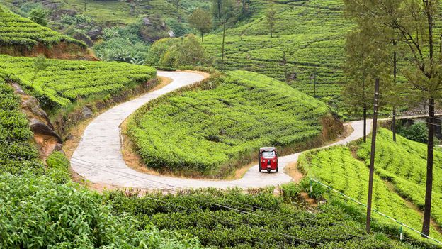 """proxyminder.jpgGrowing up, a """"music bread"""" tuk tuk would drive to the author's rural village in Sri Lanka twice a day (Credit: Credit: proxyminder/Getty Images)"""