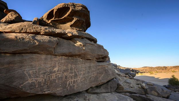 Giraffes, gazelles, ostriches and other animals that have not lived near Sabu for thousands of years are etched into the rocks