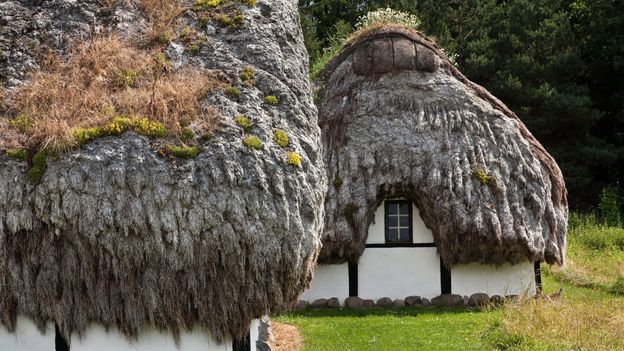 Læsø is the only place in Denmark where eelgrass thatching can be found (Credit: Credit: Carstenbrandt/Getty Images)