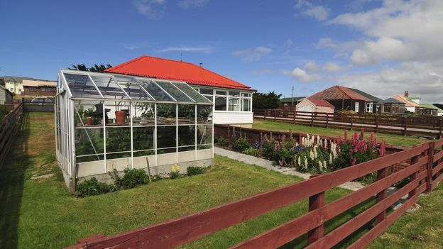 Traditionally, most Falklands families would have a small plot to grow their own vegetables (Credit: Credit: Rafael Wollmann/Getty Images)