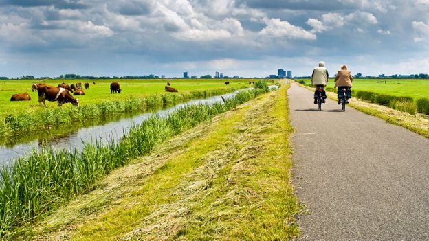 Around one third of the Netherlands lies below sea level (Credit: Credit: Demid/Getty Images)