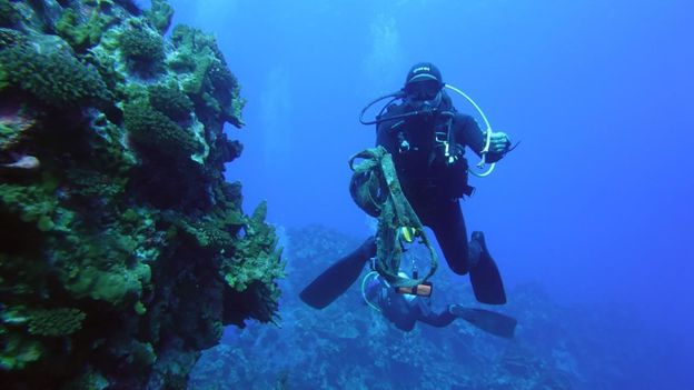 Local divers are undertaking a seabed restoration project on Easter Island (Credit: Credit: Municipalidad de Rapa Nui)