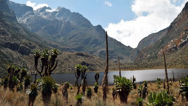 The region's glaciers, waterfalls and lakes make it one of Africa's most beautiful alpine areas (Credit: Credit Martin Mwaura/Getty Images)