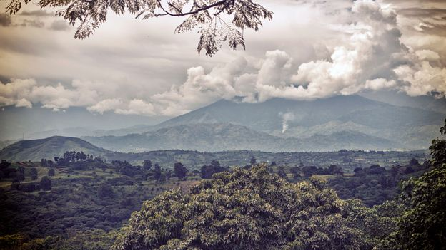 The Rwenzori Mountains National Park has Unesco listing as an area of exceptional natural beauty (Credit: Credit: Misugo/Getty)