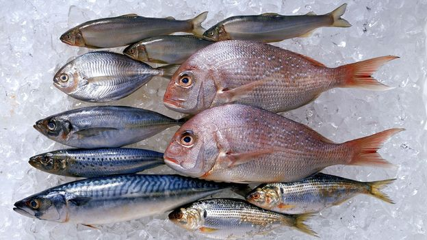 Is eating fish healthy? - BBC Future