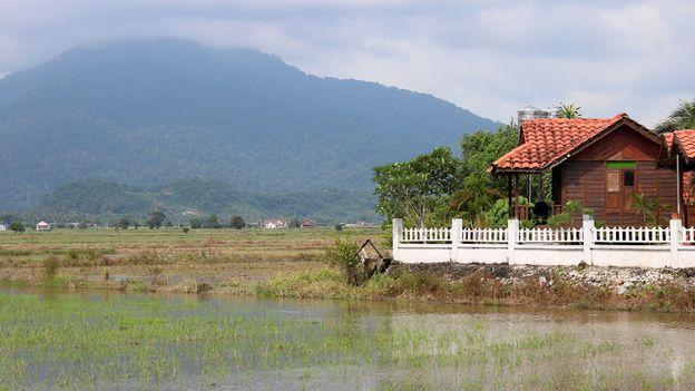 Beyond its popular tourist beaches, Langkawi has a verdant and rural interior (Credit: Credit: Thomas Bird)