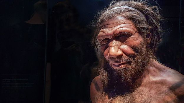 Here's what we know sex with Neanderthals was like