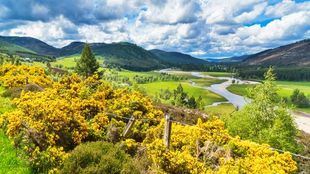 While English is the main language spoken in Scotland, the nation has a wide range of different accents and dialects (Credit: Credit: Dennis Barnes/Getty Images)