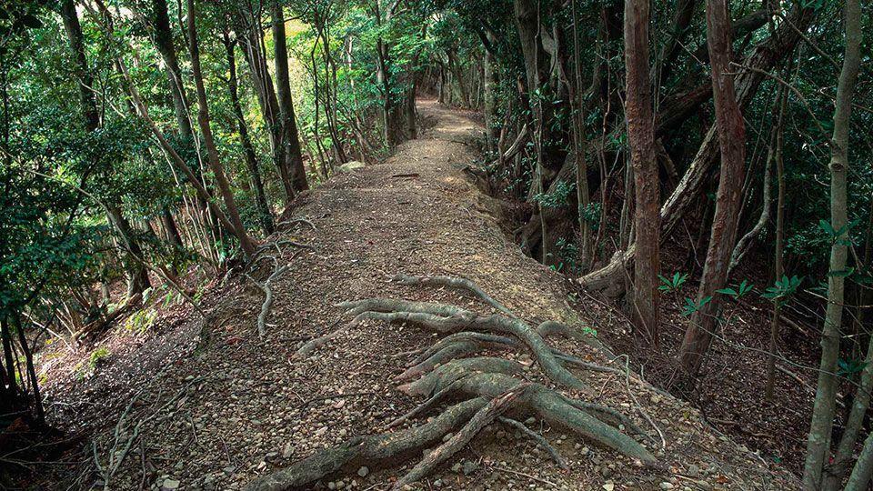 Pilgrimage route - Ohechi