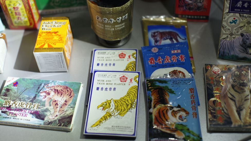 Officials monitoring the illegal trade in tigers discover all manner of items valued in traditional Asian medicine, such as tiger bone plasters. (Copyright: Getty images)