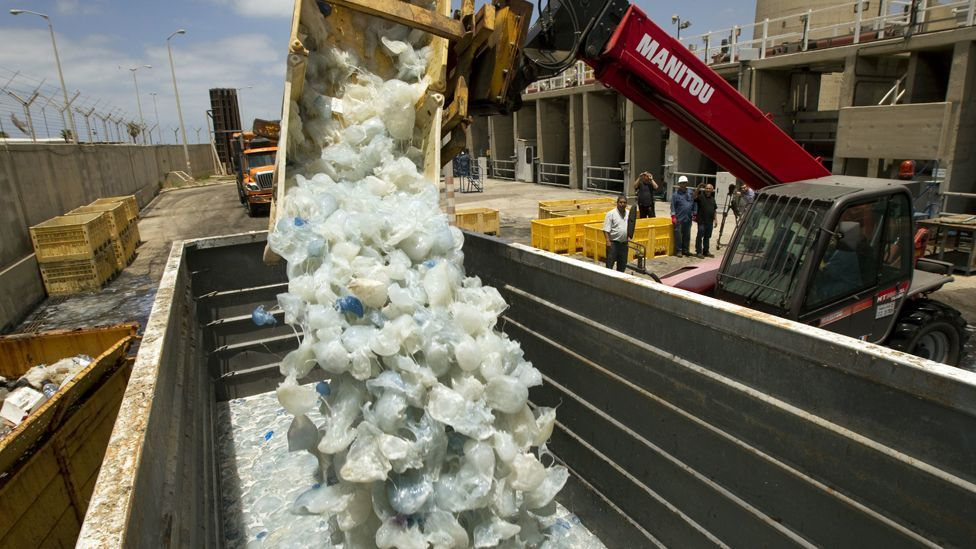 Workers at the Hadera power station resort to sweeping measures to remove the jellyfish infestation. (Copyright: Getty Images)