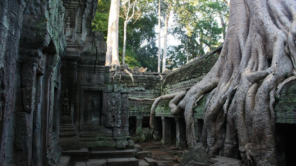 Temples overgrown by forest show remnants of the Khmer Empire, thought to have collapsed due to water shortages and deforestation. (Copyright: Nick Pattinson)