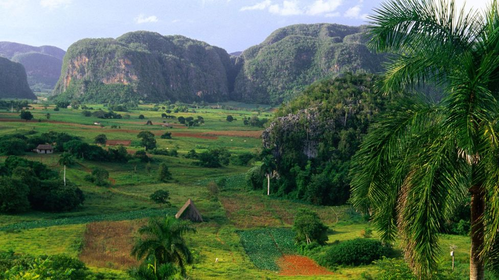 The Viñales Valley is peppered with rare pin-cushion hills that overlook fertile farming land. (Jerry Alexander/LPI)
