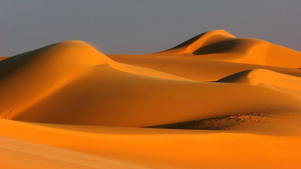 Sahara Desert dunes (Copyright: SPL)