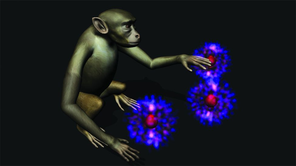 Darpa funded professor, Miguel Nicolelis of Duke University, demonstrated that a monkey with implants can be taught to move a joystick just by thinking. (Copyright: Katie Zhuang)