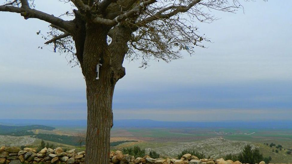 Göbeklı TepeTurkey wishing tree