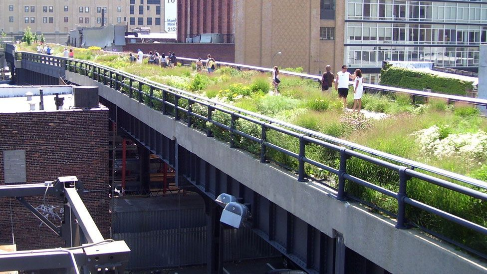 A disused raised railway elevated above the streets on Manhattan's West Side has been converted into a popular park. (Copyright: Beyond My Ken/Wikimedia Commons)