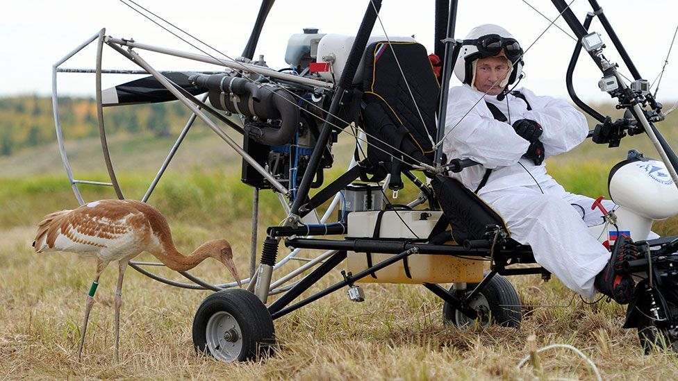 Showing a gentler side, Putin made three flights on a motorised hang glider wearing a fluffy white jumpsuit as part of an experiment to preserve a rare species of crane. (Getty)