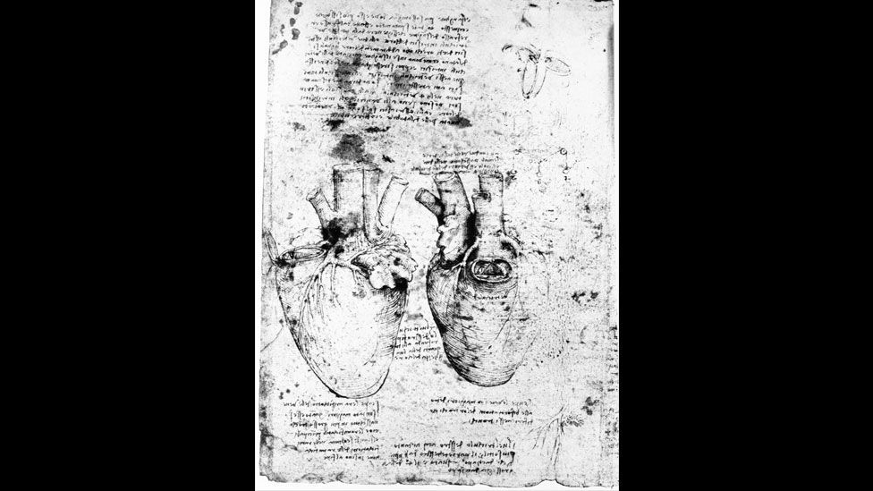 He stated firmly that the heart was comprised of four chambers at a time when it was generally understood to be made up of two. (Corbis)