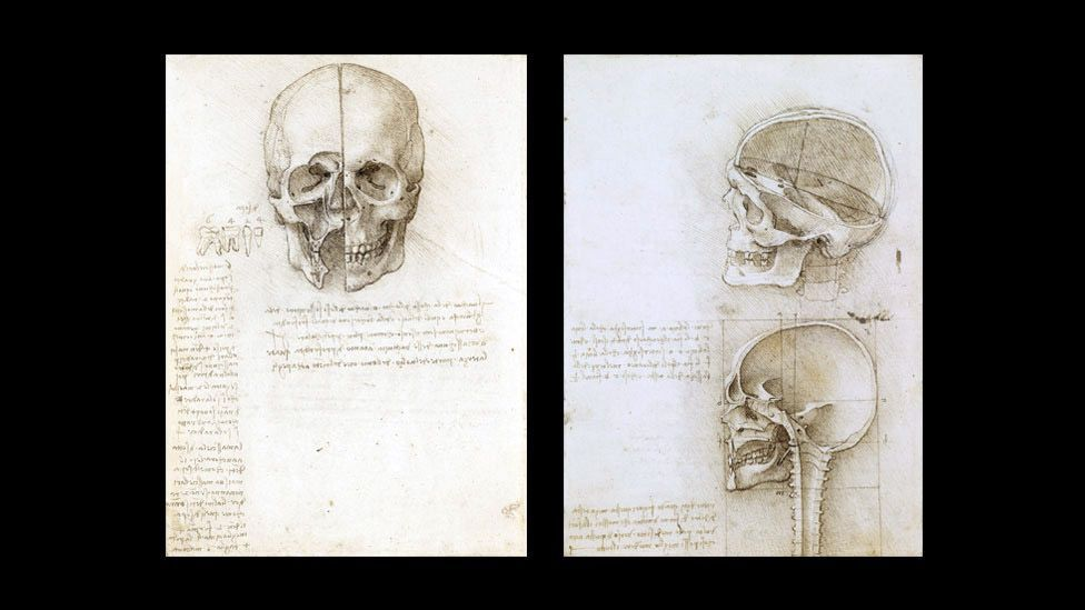 The drawing A Skull Sectioned from 1489 studies the position of the facial cavities in relation to surface features. (Corbis)