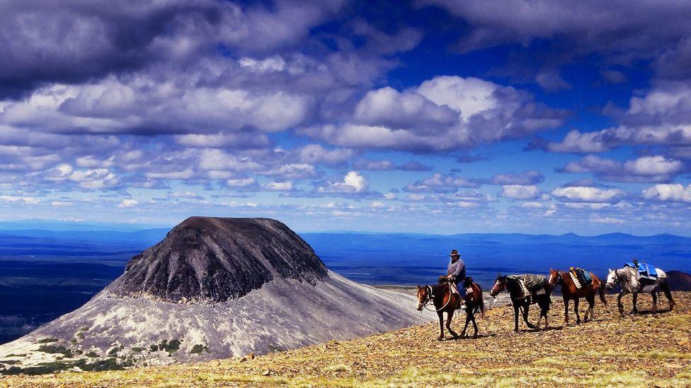 Horse trekking, Canada, British Columbia, horseback riding, horses