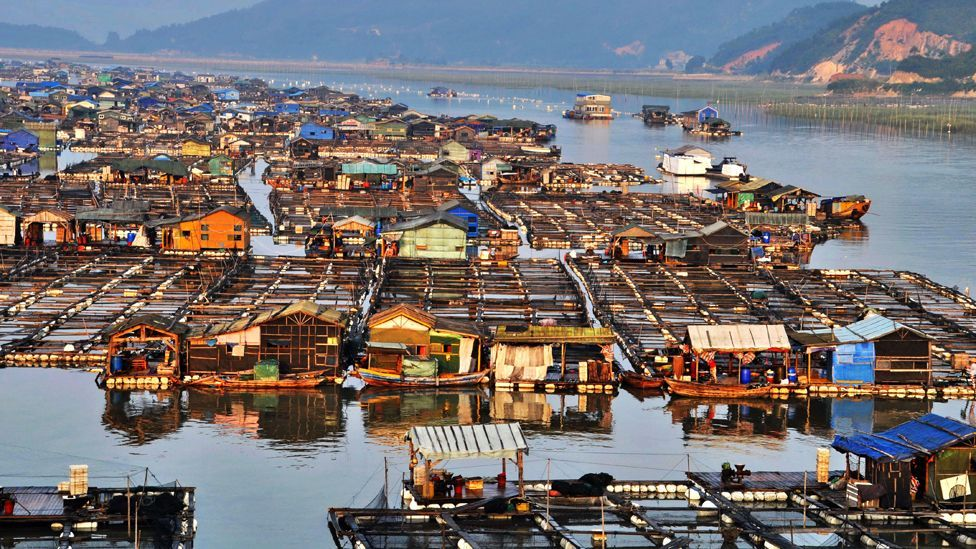 Mankind has long sought shelter on the sea. Members of China's Tanka community have been living in villages based entirely on water for more than 1,200 years. (Rex Features)