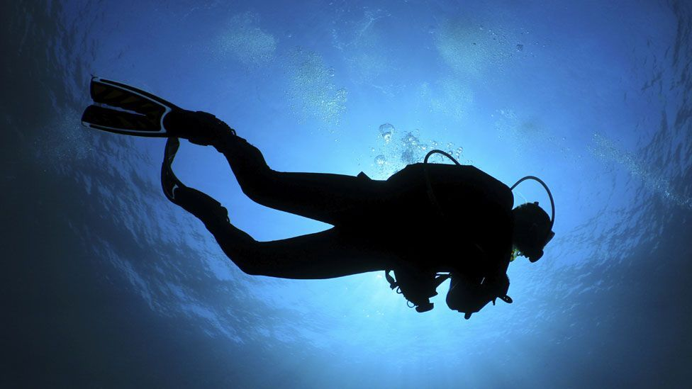 Underwater, the rumblings of divers, boats and oil rigs travel further than in air. (Thinkstock)