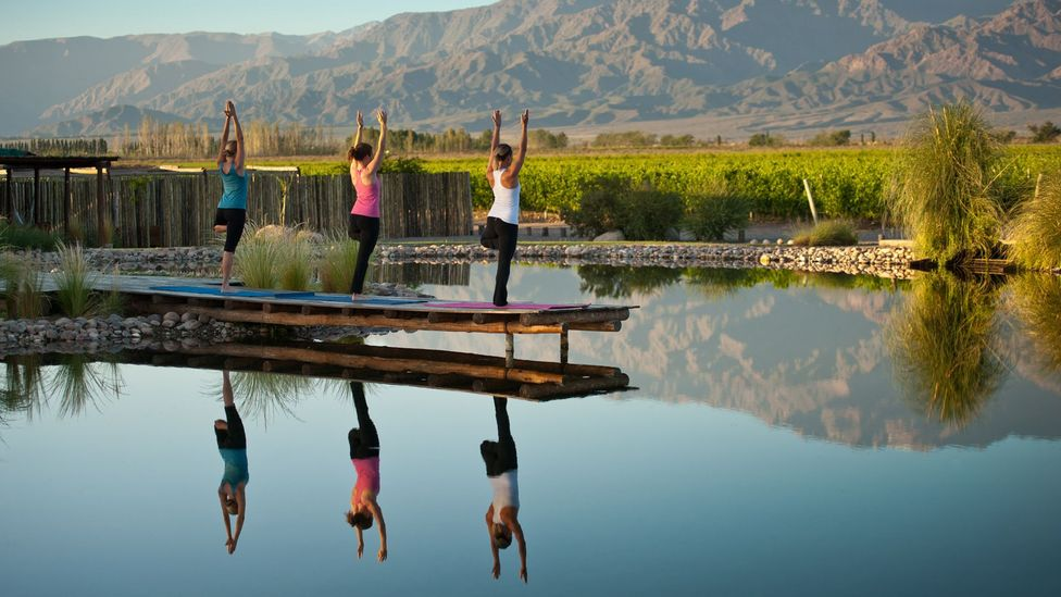 Renting your vineyard's villa or opening a resort can provide income. Yoga at Vines of Mendoza's resort. (Michael Evans)