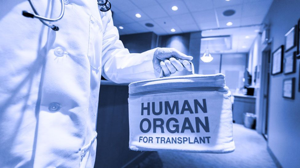 Will we ever cryopreserve our organs, and why is it so hard to do? (Thinkstock)