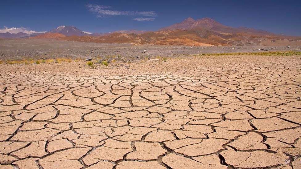 Parts of Chile's Atacama Desert see no rain for 50 years, yet just enough water exists to support life inside rock pores. (Thinkstock)