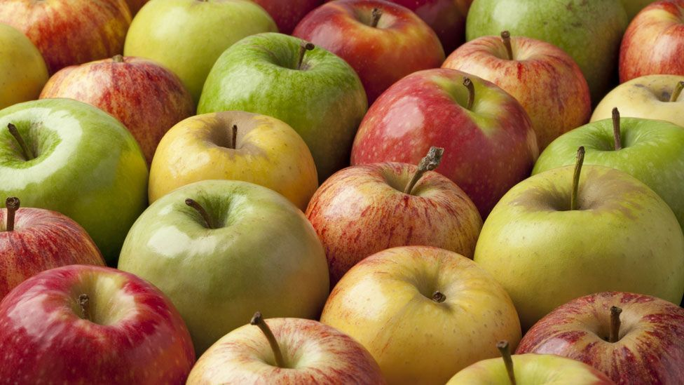Compared to historic records, 86% of apple varieties grown in the US are gone (Thinkstock)