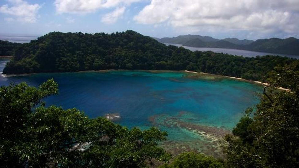 READ MORE: Wishing for something a little more tropical? How to buy your own piece of paradise, and possibly make a profit as the owners of this Fiji island did. (Megan Snedden)