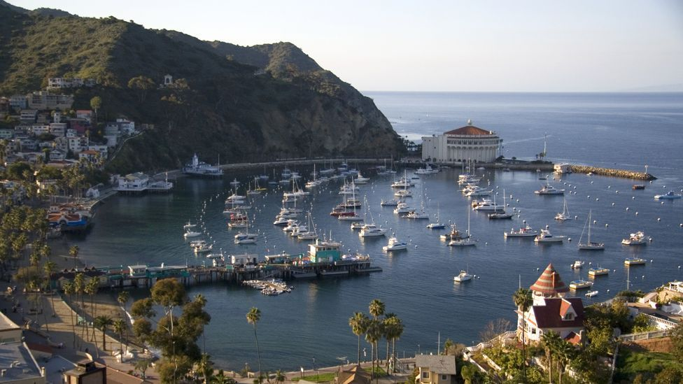 Catalina Island lies 35km off the Californian coast and was once used as a location for Hollywood films (Science Photo Library)