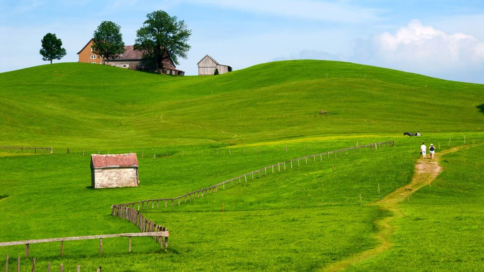 The Gonten trail, where hikers trek barefoot through Appenzell's rolling hills and farmland. (Martin Moos/Getty)